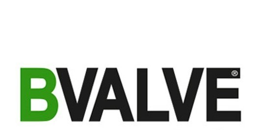 Induchem Group Partnership with BVALVE
