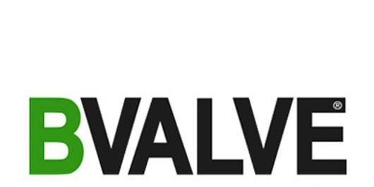 Induchem Group Partnership with BVALVE